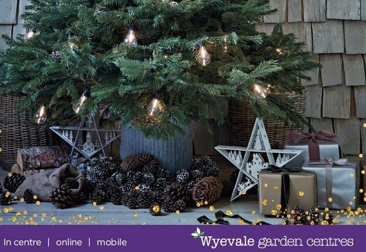 Wyevale Christmas Look Book 725 x 500
