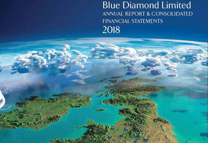 Blue Diamond Garden Centre annual report 2018 725 x 500.jpg