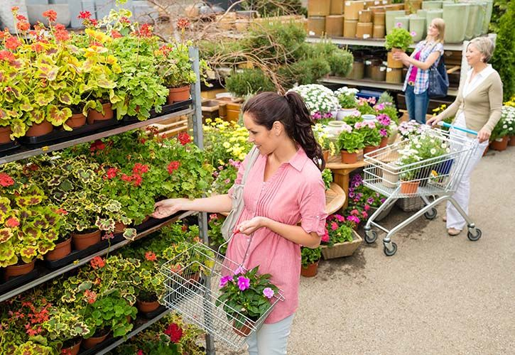 Female shoppers at garden centre - shutterstock - 725 x 500