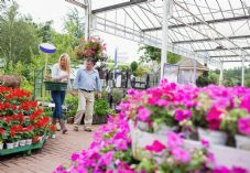 Couple in garden centre shutterstock_117231496 725 x 500.jpg