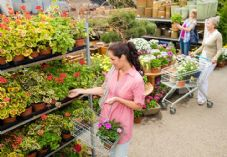Female shoppers at garden centre shutterstock_105761693 725 x 500